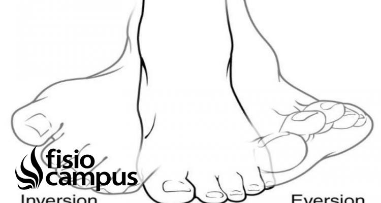 eversión del pie