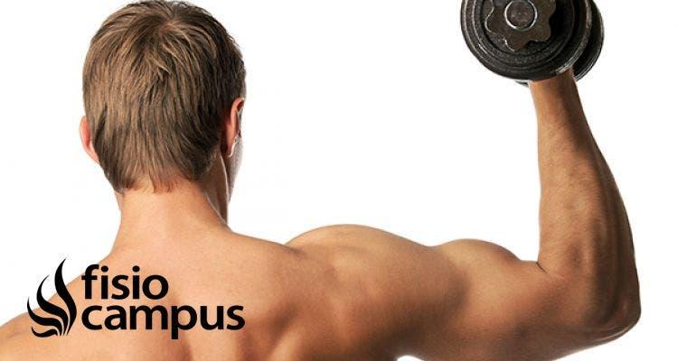 Entrenamiento en el gimnasio: ¿cómo puedo prevenir lesiones en los brazos?