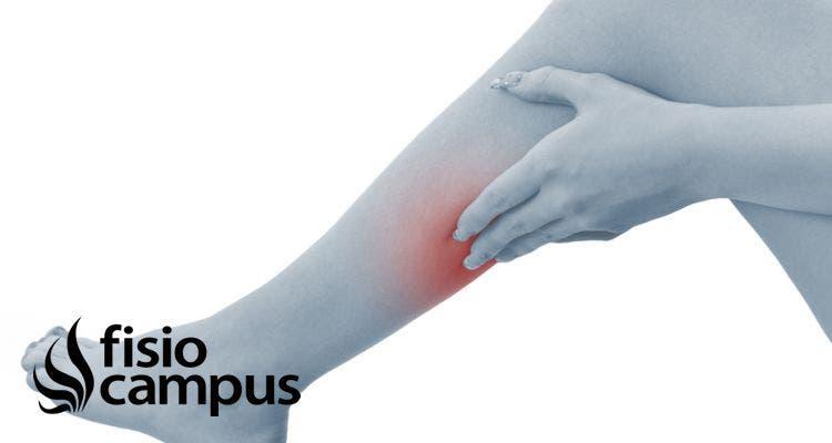 Rotura de fibras o desgarro muscular. Tratamiento, ejercicios y recuperación