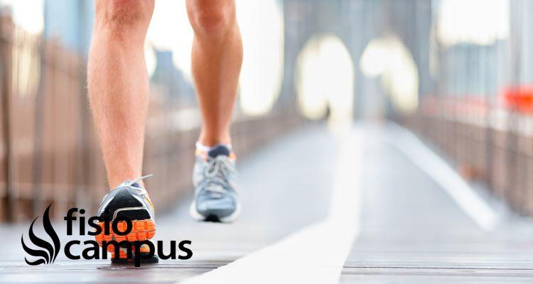 El pie en el deporte. Elección del calzado deportivo y cuidados del pie