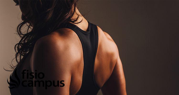Ejercicios y recomendaciones para las dorsales y escápulas