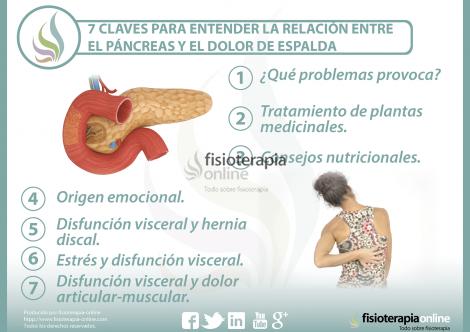 7 claves para entender la relación entre el páncreas y el..
