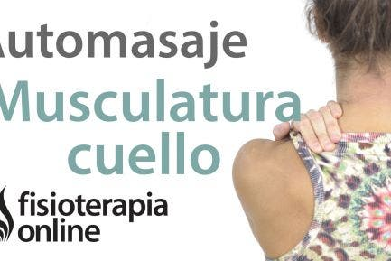 Los ejercicios a la osteocondrosis del vídeo la parte 2