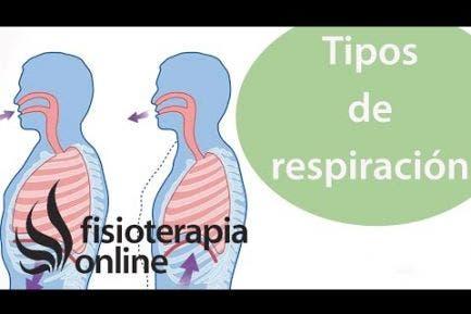 Respiración torácica VS respiración abdominal desde la visión de la fisioterapia respiratoria