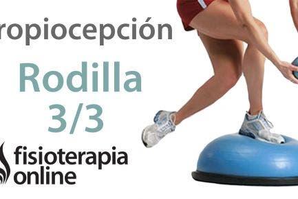 Ejercicios de propiocepción o propioceptivos de rodilla. Nivel avanzado. Reforzar la rodilla