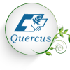 QUERCUS - Fisioterapia y osteopatía