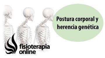 Postura corporal y herencia genética