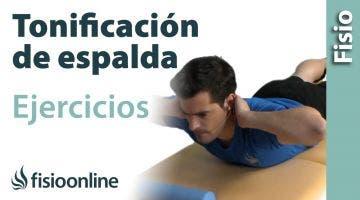 Ejercicio de tonificación para la espalda  Musc, espinal