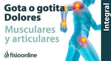 Gota, gotita o pseudogota  Dolores articulares y musculares 1 PGM