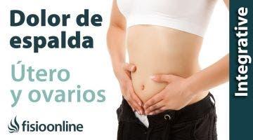 Tratamiento para el dolor lumbar o lumbalgia provocado por una alteración de  útero y ovarios