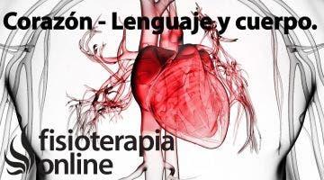 Corazón - Lenguaje y cuerpo.