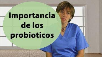 ¿Qué importancia tiene los probioticos para la salud?