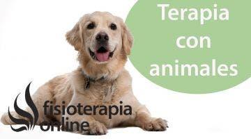 El animal como compañía terapéutica desde la visión de la fisioterapia