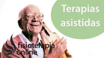 Qué son las terapias asistidas con animales?