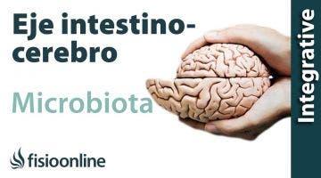 Microbiota, eje intestino cerebro