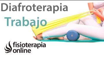 Diafreoterapia   Trabajo corporal consciente  Exposición de una sesión