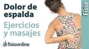 Dorsalgia - Tratamiento con ejercicios, estiramientos y masajes.