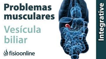 Vesícula biliar: problemas articulares y musculares que puede provocar
