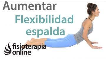 Ejercicios para aumentar la flexibilidad de la espalda ( para principiantes )