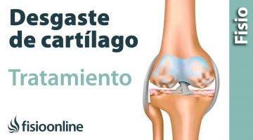 Cartílago y desgaste de cartílago - Qué es, cuáles son sus causas y tratamiento