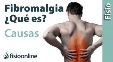 Fibromialgia  Una opinion sobre sus causas, tratamiento y solución
