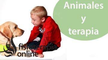 Terapias con animales y sus diferencias desde la visión de la fisioterapia