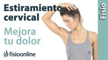 Estiramientos y movilizaciones para las cervicales. Mejora tu dolor de cuello y hombros.