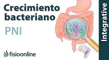 Sobrecreimiento bacteriano, entendiéndolo a través de la PNI