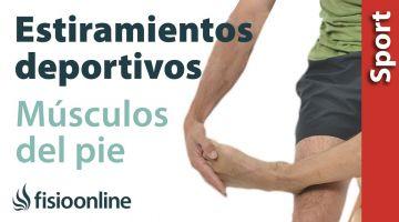 Estiramientos deportivos para relajar los músculos del pie
