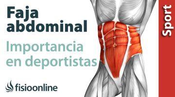 Importancia del Core y la faja abdominal en el rendimiento deportivo.