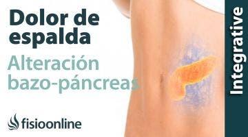 Tratamiento para dolor de espalda  dorsal provocado por una alteración del bazo y páncreas