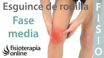 Esguince de ligamento lateral EXTERNO de rodilla. Tratamiento en su fase intermedia