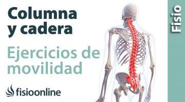 Ejercicio de alineación de columna y movilidad de cadera