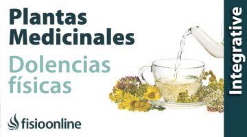 ¿Cómo utilizar las plantas medicinales sobre los problemas de espalda, articulares y musculares?