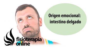 Origen emocional de la disfunción de intestino delgado.