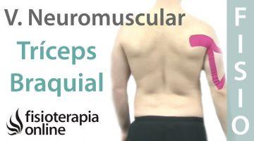 Cómo tonificar el tríceps braquial con vendaje neuromuscular