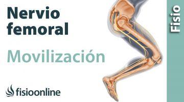 Flexibilización y movilización del nervio femoral.