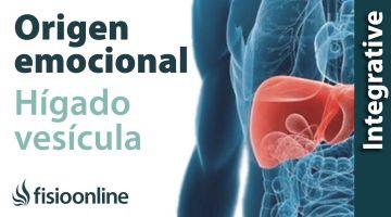 Origen emocional de la disfunción de hígado y vesícula biliar.