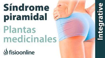 Plantas medicinales y remedios naturales para el síndrome del músculo piramidal derecho por intest