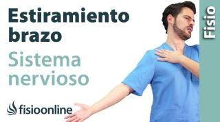 Auto-estiramiento del sistema nervioso del brazo.