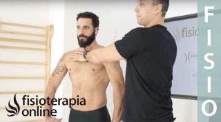 Hipopresivos beneficios en la flexibilidad corporal