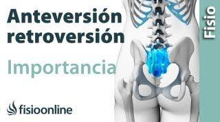 32# Anteversión y retroversión pélvicas. Que son y cual es su importancia.