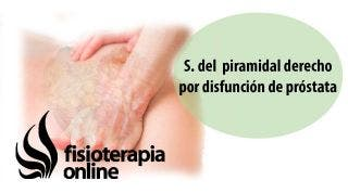S  del  piramidal derecho por disfunción de próstata  Alimentación y nutrición
