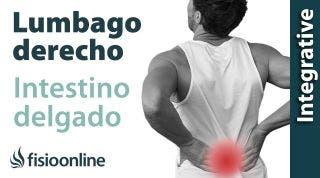 Lumbalgia o lumbago derecho y su relación con el intestino delgado