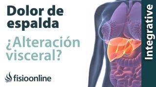 Tratamiento para dolor de espalda cervical y dorsal provocado por una alteración del estómago