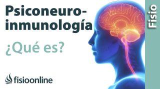 ¿Qué es la psiconeuroinmunología (PNI) y cómo puede ayudarnos?