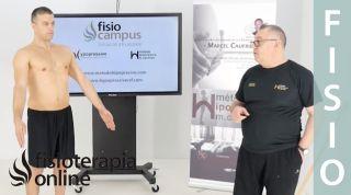 Primer ejercicio ortoestático programa base, etapa 4