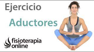 Ejercicio de potenciación o fortalecimiento para los músculos aductores.