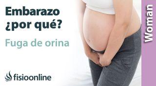 ¿Por qué se me escapa el pis embarazada? Cambios que provocan que tu cuerpo tenga más débil tu suelo