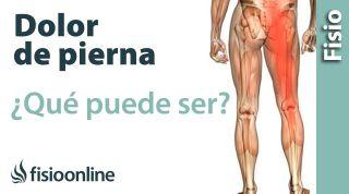 ¿Todo lo qué duele hacia la pierna es ciática?  Y si no, ¿Qué puede ser?